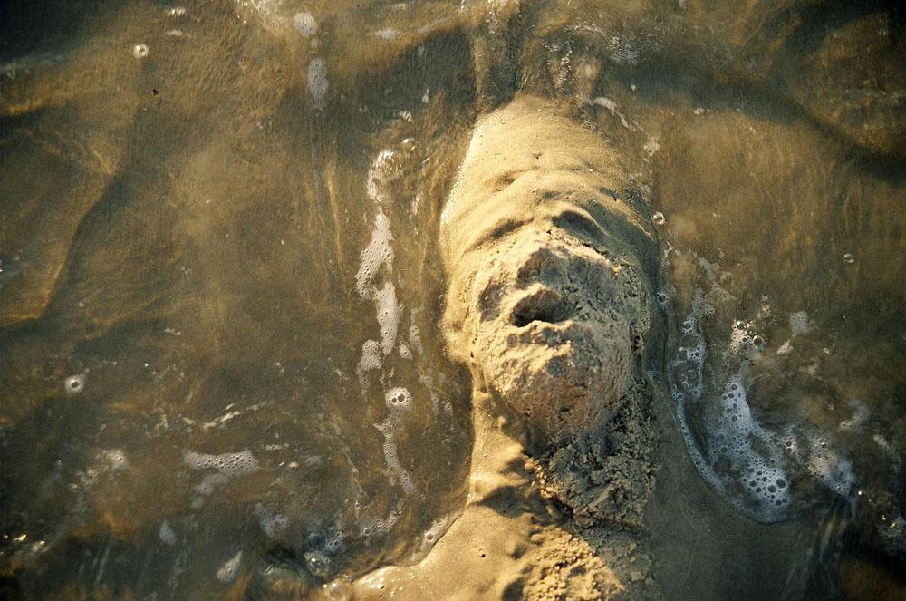 sandface004