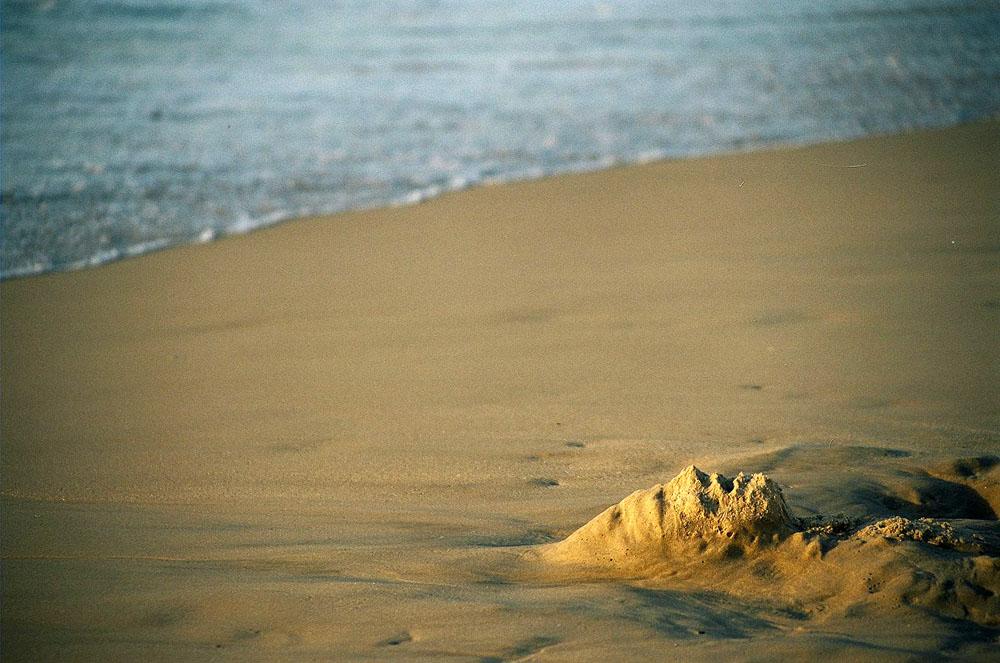 sandface006